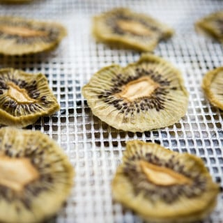 Dehydrated Kiwi Chips by Thriving On Paleo