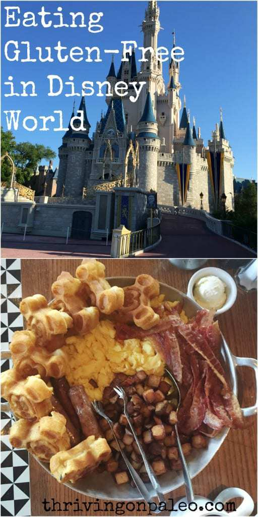 Eating Gluten-Free In Disney World Part 1 by Thriving On Paleo