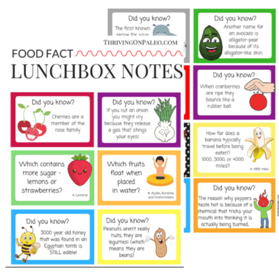 Food Fact Lunchbox Notes - a great way to show your children you love them and to jazz up a healthy lunch