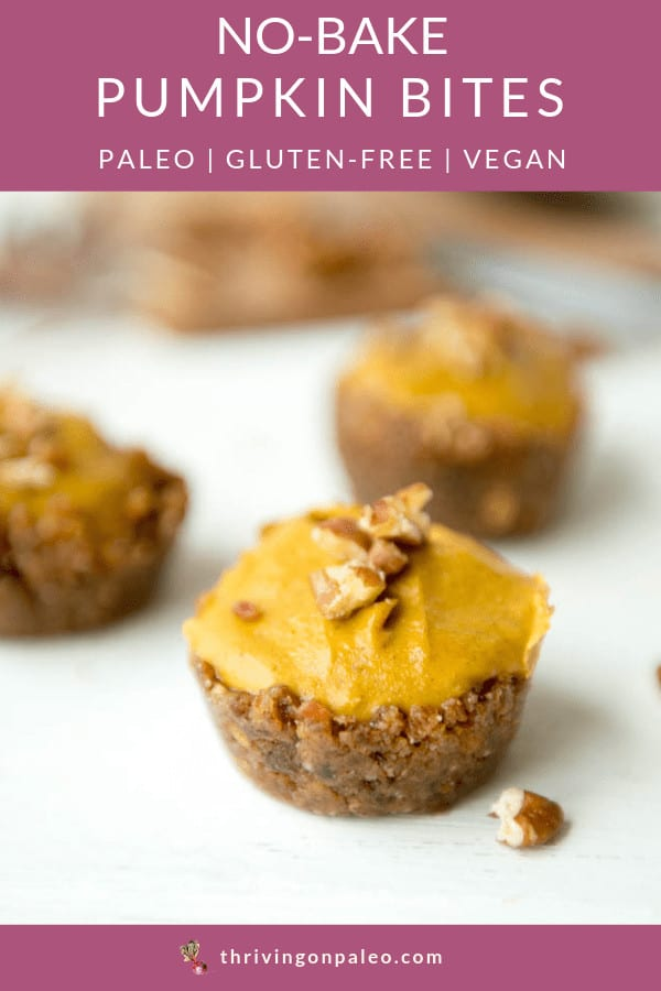Paleo Thanksgiving dessert idea - these no-bake pumpkin bites are delicious little make-ahead desserts you can make for anyone on your guest list, whether they're Paleo, Vegan, gluten-free, dairy-free, vegetarian or whatever. #paleodessertrecipes #thrivingonpaleo