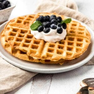 AIP waffles covered with coconut whipped cream, fresh blueberries and mint from the side